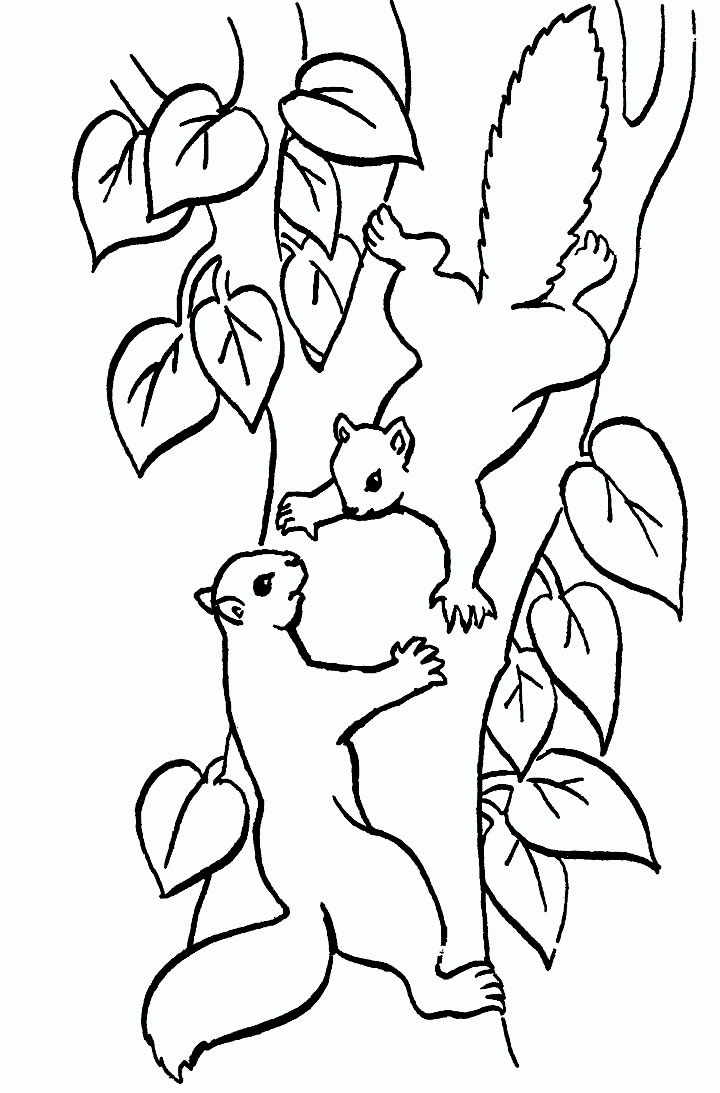 Connect the Dots Coloring Pages  by difficulty